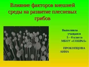 Влияние факторов внешней среды на развитие плесневых грибов  Выполнила