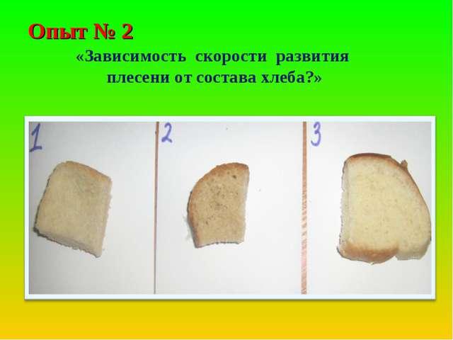 Опыт № 2 «Зависимость скорости развития плесени от состава хлеба?»