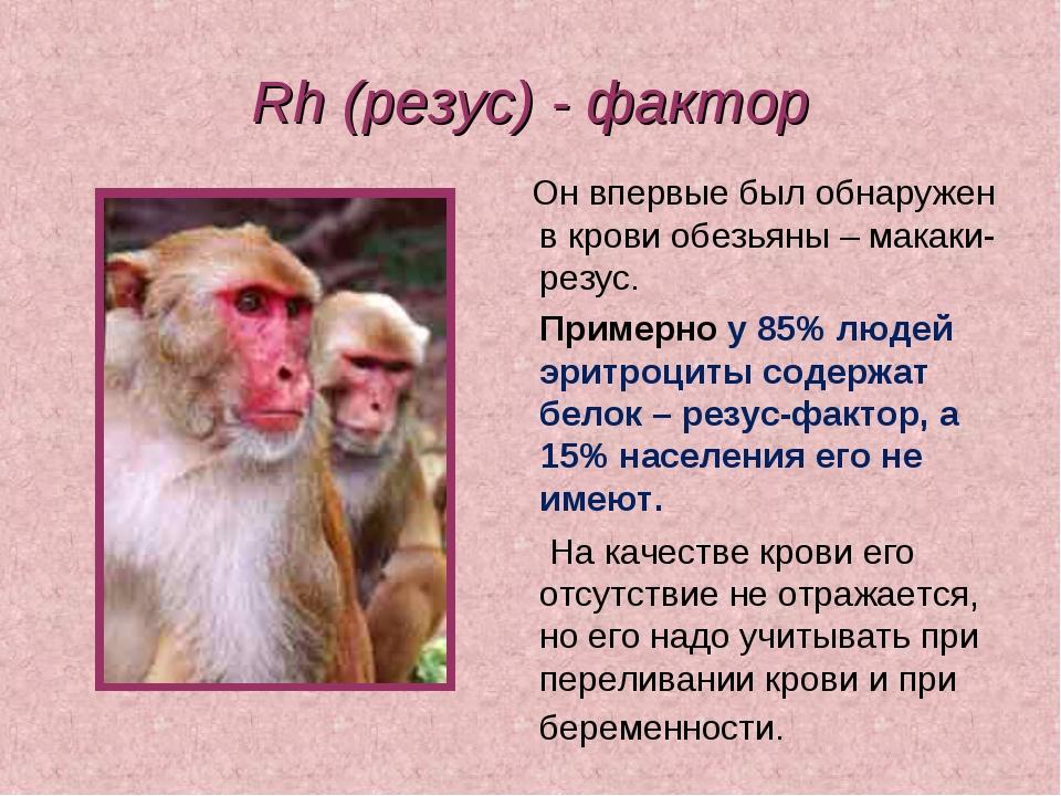 Rh (резус) - фактор Он впервые был обнаружен в крови обезьяны – макаки-резус....