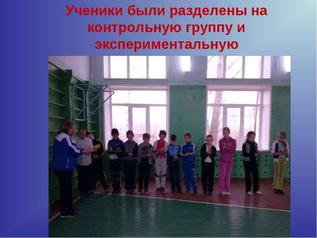 Ученики были разделены на контрольную группу и экспериментальную