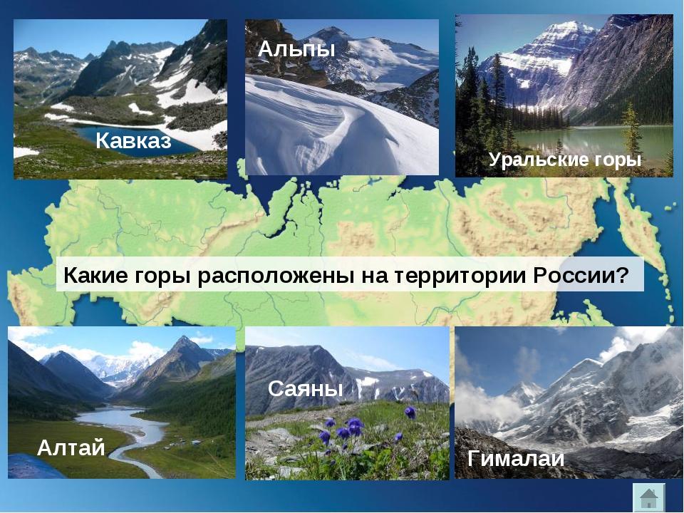 Кавказ Альпы Уральские горы Какие горы расположены на территории России? Алта...