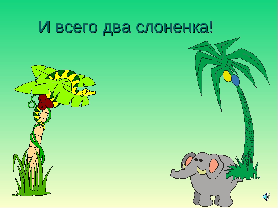 И всего два слоненка!