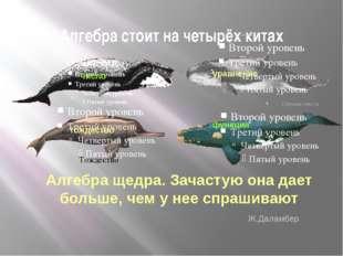 Алгебра стоит на четырёх китах Число Тождество Алгебра щедра. Зачастую она да