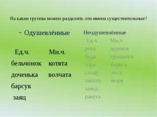 На какие группы можно разделить эти имена существительные? Одушевлённые Ед.ч.