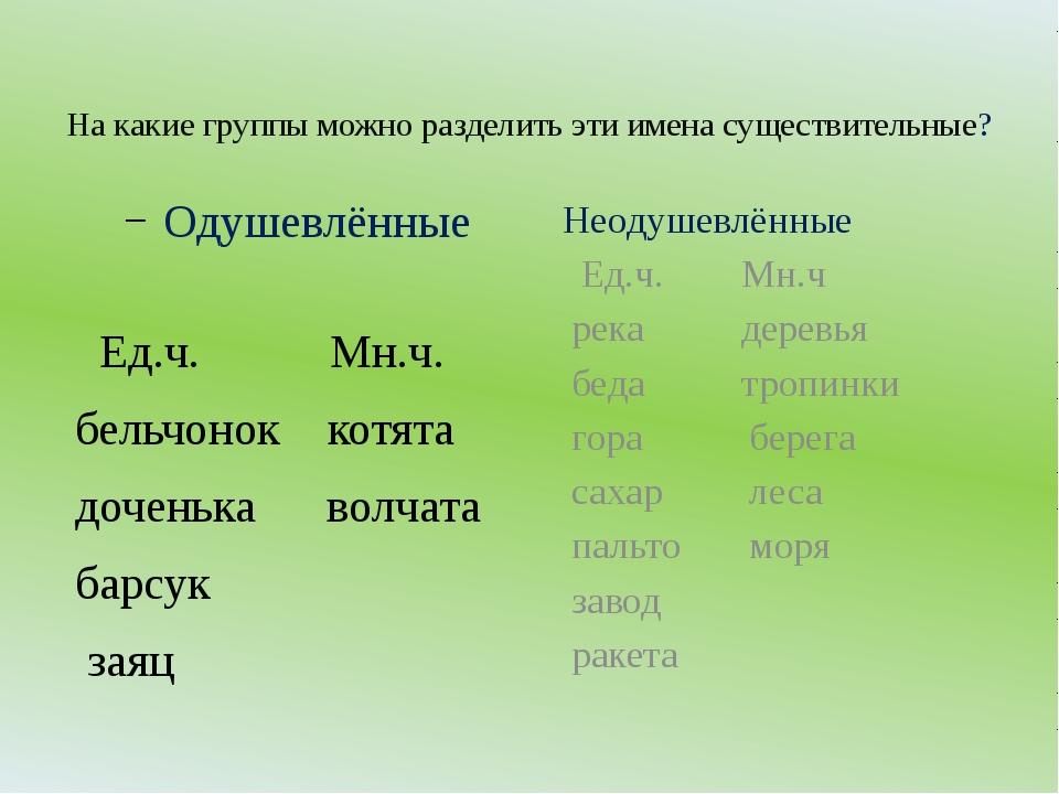 На какие группы можно разделить эти имена существительные? Одушевлённые Ед.ч....