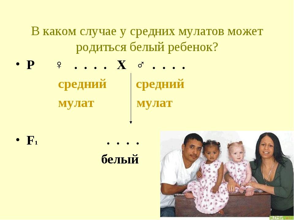 В каком случае у средних мулатов может родиться белый ребенок? Р ♀ . . . . Х...