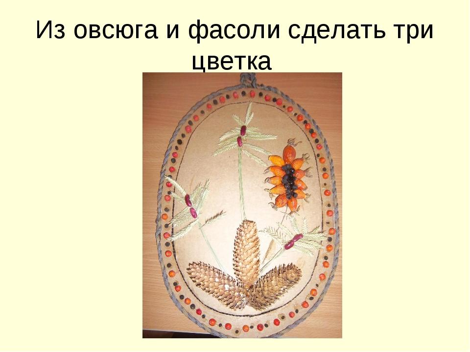 Из овсюга и фасоли сделать три цветка