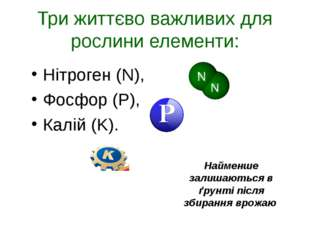 Три життєво важливих для рослини елементи: Нітроген (N), Фосфор (P), Калій (K