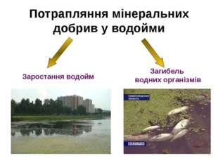 Потрапляння мінеральних добрив у водойми Заростання водойм Загибель водних ор