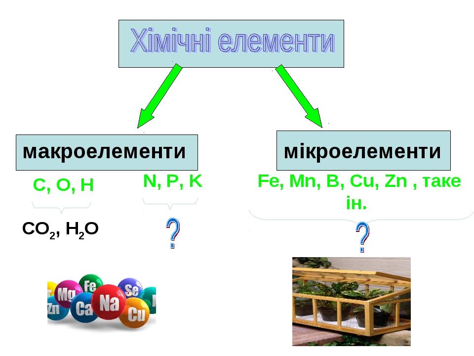 макроелементи мікроелементи С, О, Н N, P, K Fe, Mn, B, Cu, Zn , таке ін. СО2,...