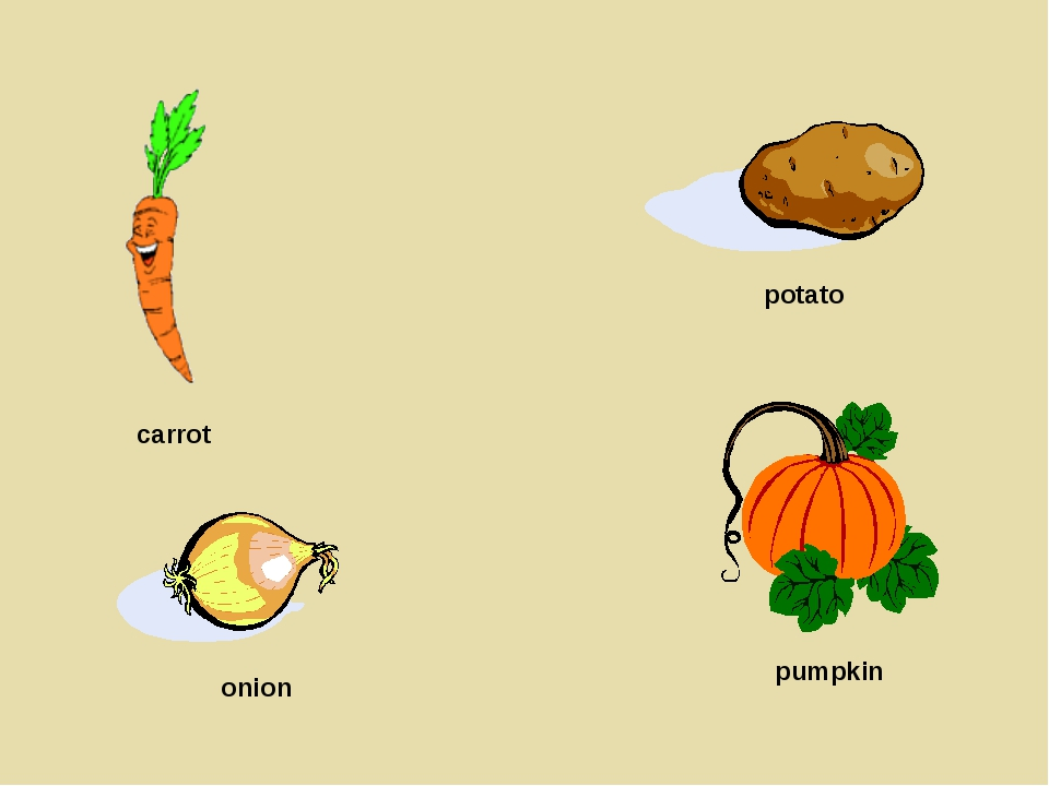 carrot onion potato pumpkin