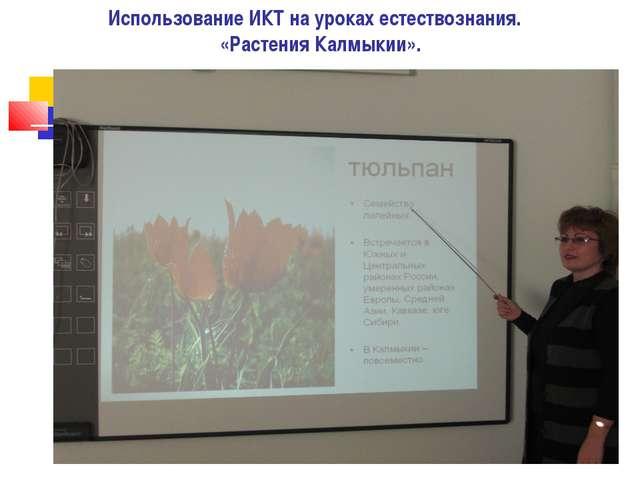 Использование ИКТ на уроках естествознания. «Растения Калмыкии».
