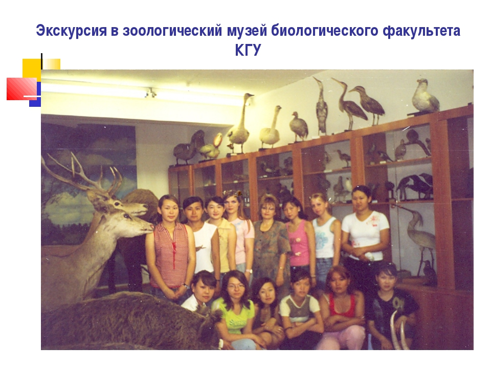 Экскурсия в зоологический музей биологического факультета КГУ