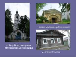 собор Благовещения Пресвятой Богородицы Часовня-усыпальница Строгановых дом-