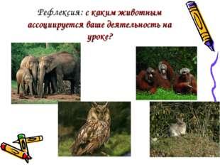 Рефлексия: с каким животным ассоциируется ваше деятельность на уроке?