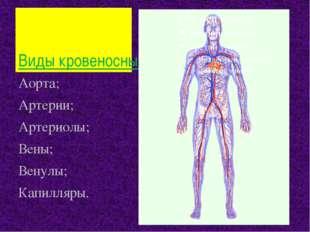 Виды кровеносных сосудов Аорта; Артерии; Артериолы; Вены; Венулы; Капилляры.