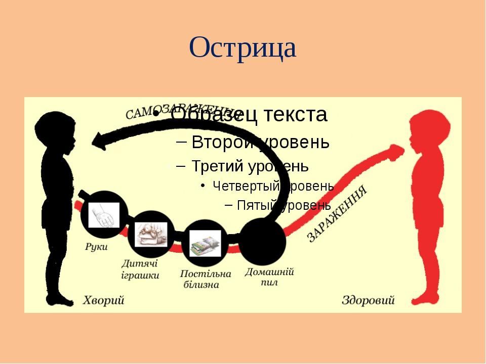 Острица