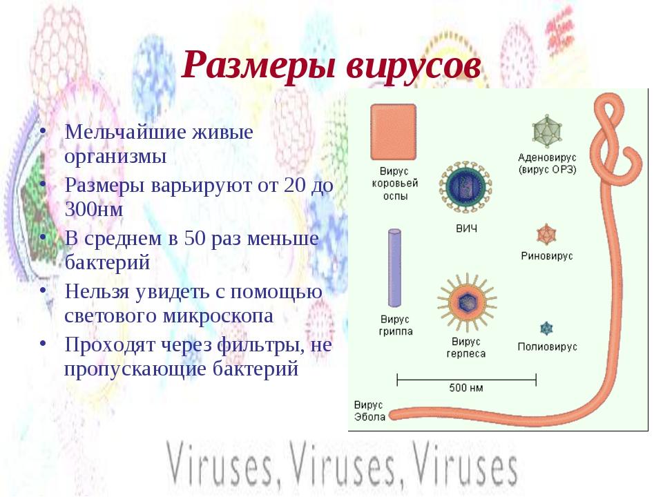 Размеры вирусов Мельчайшие живые организмы Размеры варьируют от 20 до 300нм В...