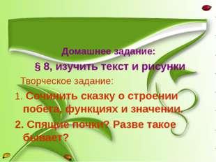 Домашнее задание: § 8, изучить текст и рисунки Творческое задание: 1. Сочини
