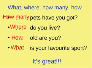 What, where, how many, how . . . pets have you got? . . . do you live? . . .