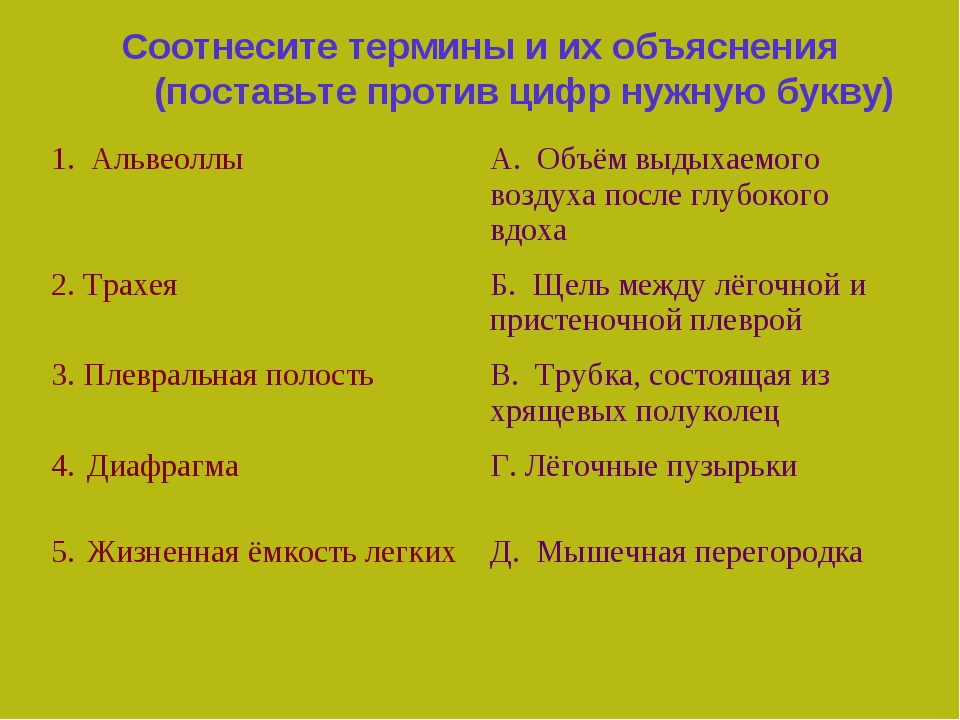 Соотнесите термины и их объяснения (поставьте против цифр нужную букву) 1. Ал...