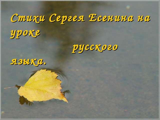 Стихи Сергея Есенина на уроке русского языка.