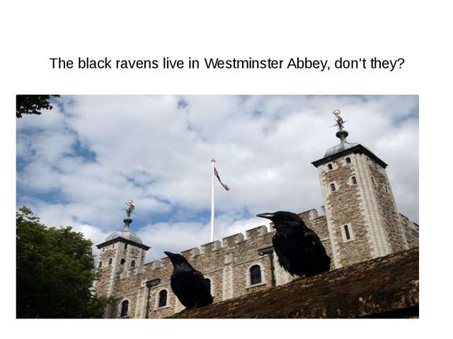 The black ravens live in Westminster Abbey, don't they?
