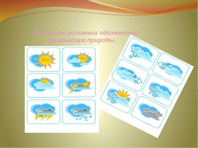 Варианты условных обозначений в календаре природы.