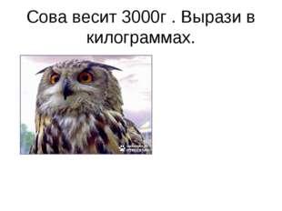 Сова весит 3000г . Вырази в килограммах.