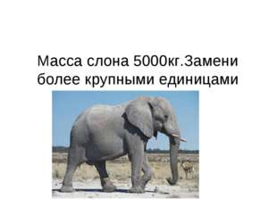 Масса слона 5000кг.Замени более крупными единицами
