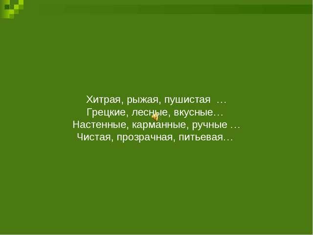 Хитрая, рыжая, пушистая … Грецкие, лесные, вкусные… Настенные, карманные, руч...