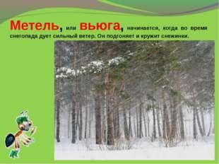 Метель, или вьюга, начинается, когда во время снегопада дует сильный ветер. О