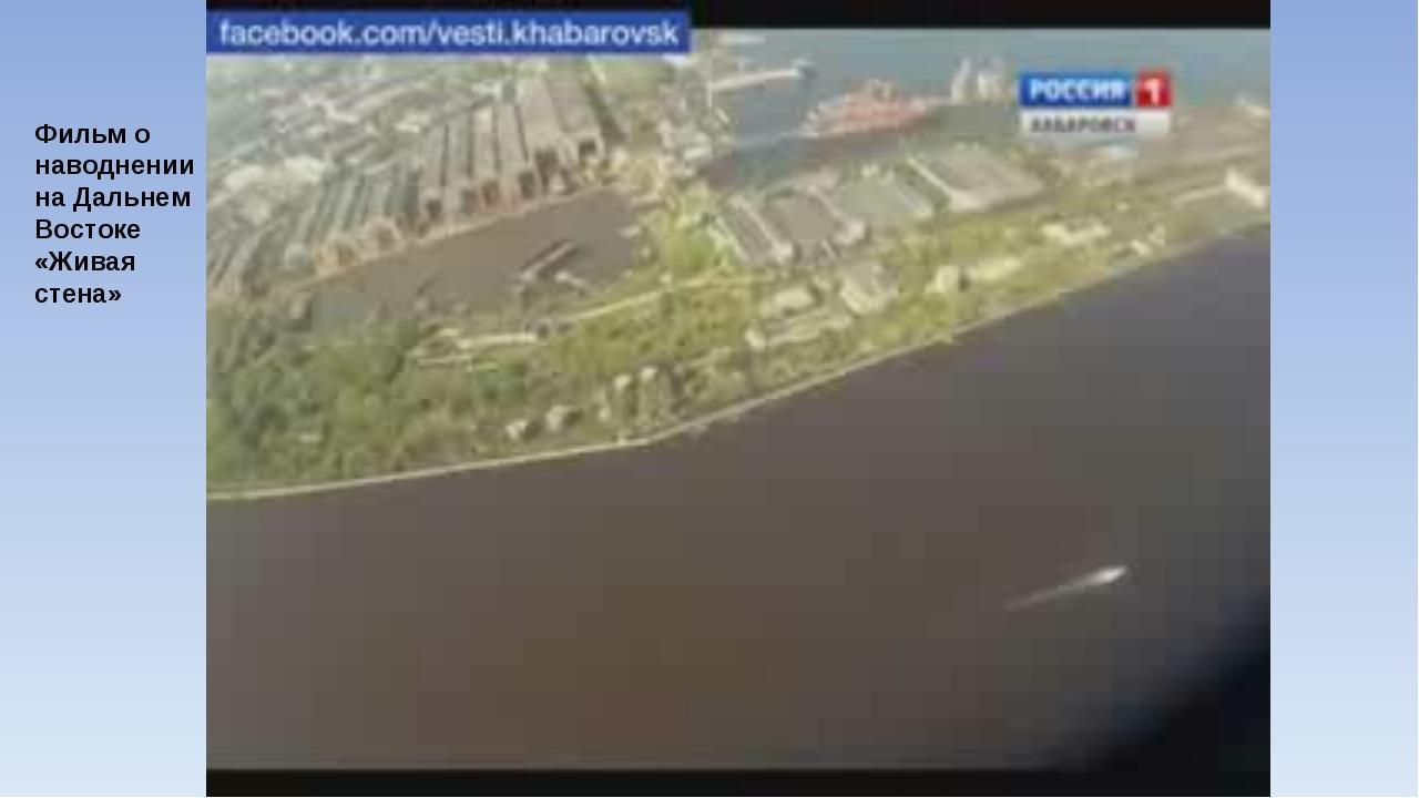 Фильм о наводнении на Дальнем Востоке «Живая стена»