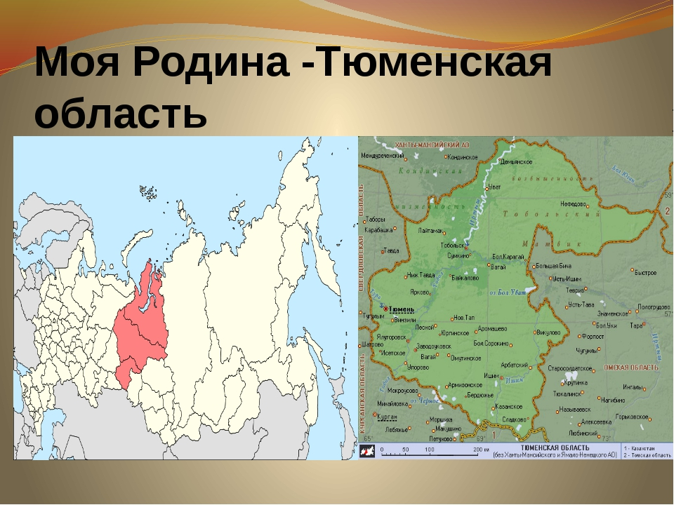 Моя Родина -Тюменская область