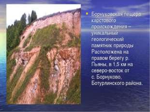 Борнуковская пещера карстового происхождения – уникальный геологический памят