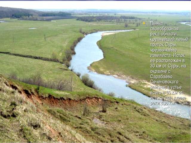 Пьяна своеобразная река области, крупнейший левый приток Суры, чрезвычайно из...
