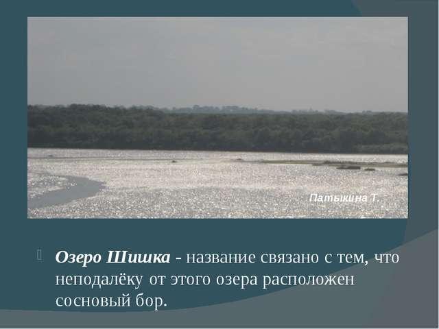 Озеро Шишка - название связано с тем, что неподалёку от этого озера располож...