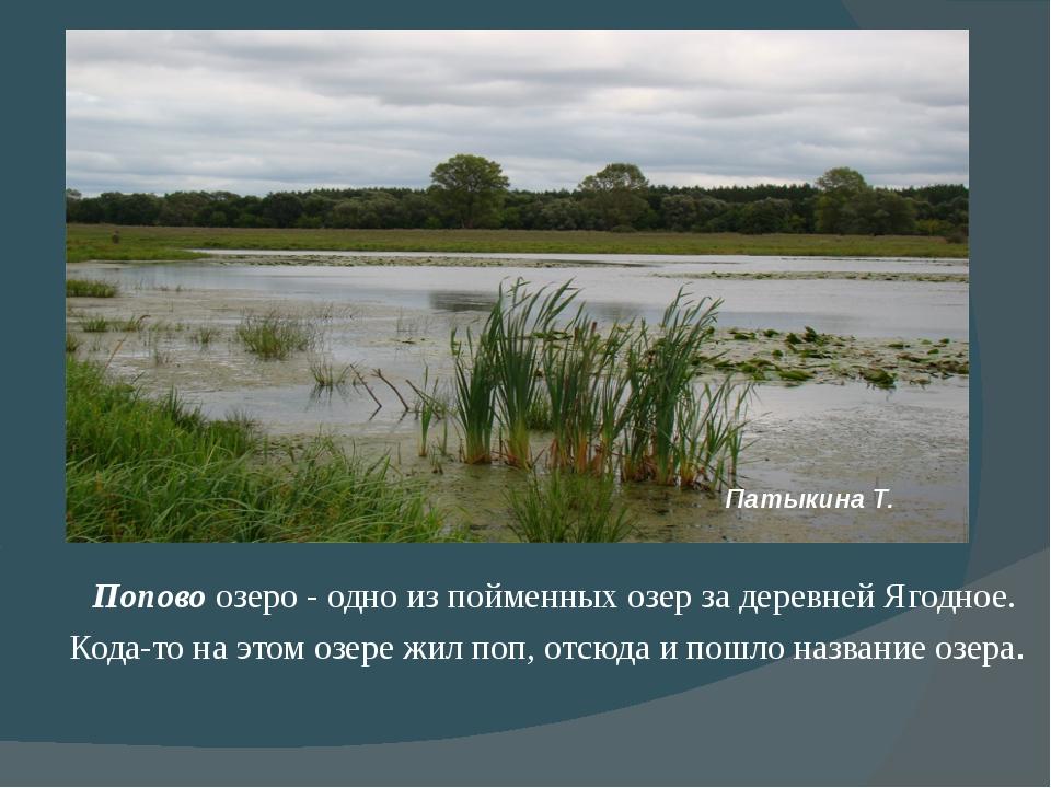 Попово озеро - одно из пойменных озер за деревней Ягодное. Кода-то на этом о...