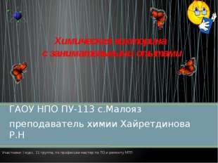 ГАОУ НПО ПУ-113 с.Малояз преподаватель химии Хайретдинова Р.Н Химическая викт