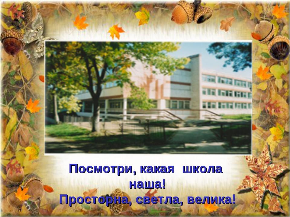 Посмотри, какая школа наша! Просторна, светла, велика! http://aida.ucoz.ru