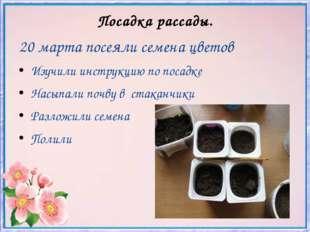 Посадка рассады. 20 марта посеяли семена цветов Изучили инструкцию по посадке