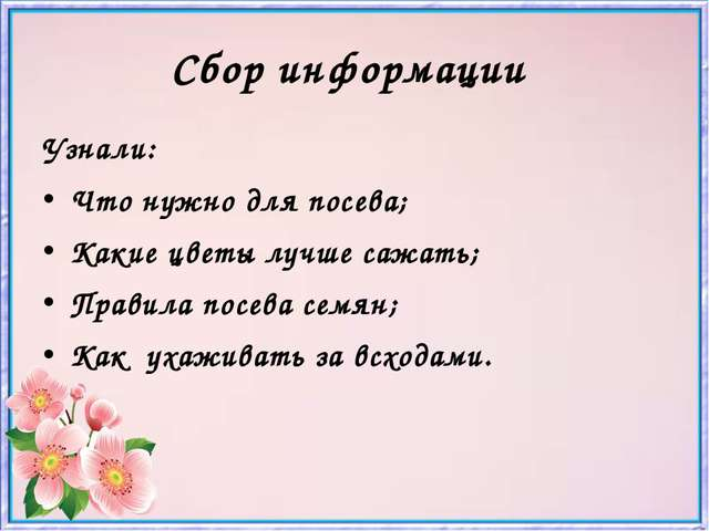Сбор информации Узнали: Что нужно для посева; Какие цветы лучше сажать; Прави...