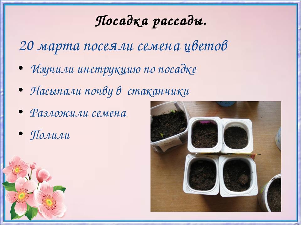 Посадка рассады. 20 марта посеяли семена цветов Изучили инструкцию по посадке...