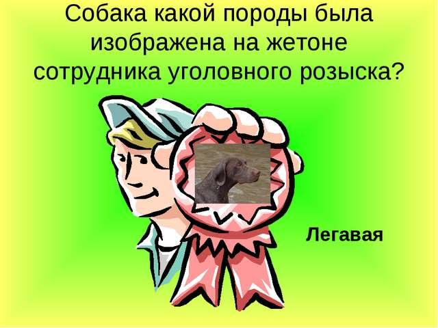 Собака какой породы была изображена на жетоне сотрудника уголовного розыска?...