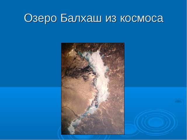 Озеро Балхаш из космоса