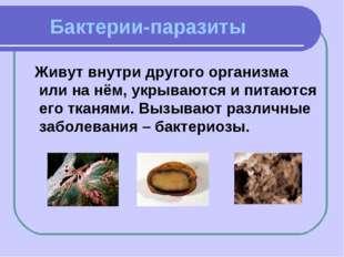 Бактерии-паразиты Живут внутри другого организма или на нём, укрываются и пи