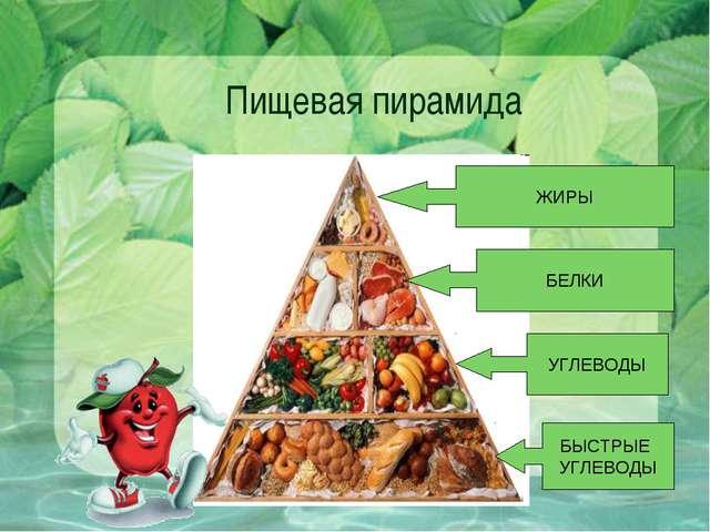 Пищевая пирамида БЫСТРЫЕ УГЛЕВОДЫ УГЛЕВОДЫ БЕЛКИ ЖИРЫ