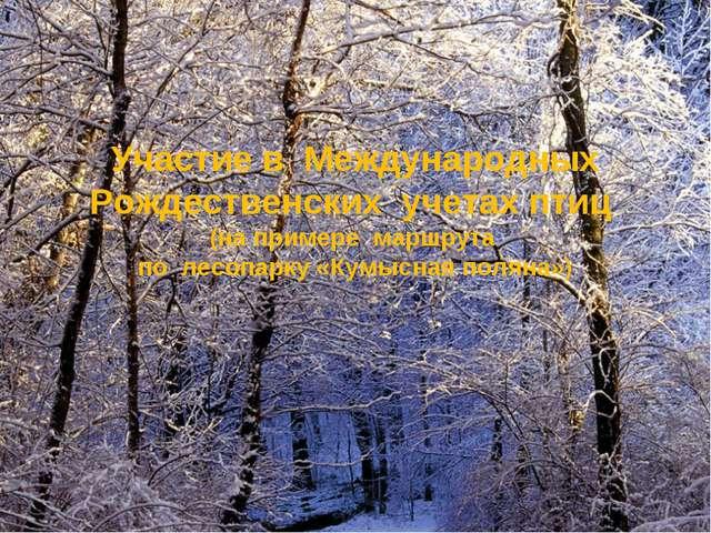Участие в Международных Рождественских учетах птиц (на примере маршрута по ле...
