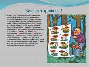 Будь осторожен !!! Грибы. Даже хорошие грибы при неумеренном потреблении могу