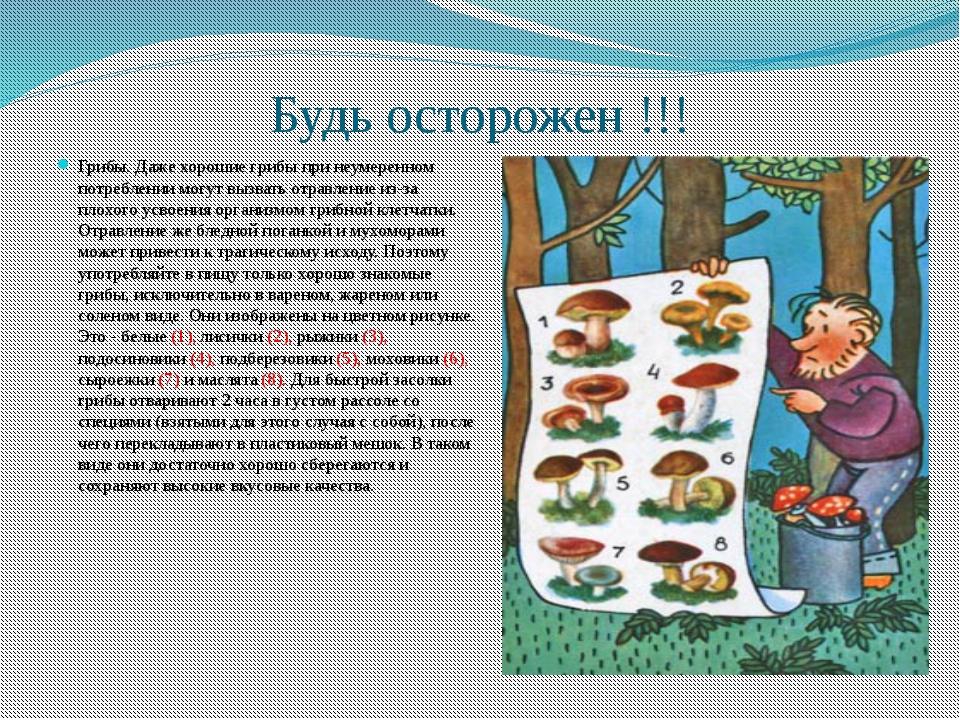 Будь осторожен !!! Грибы. Даже хорошие грибы при неумеренном потреблении могу...